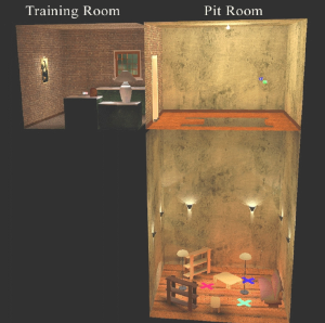 The Pit Experiment